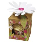 Little Garden Small Cupcake Box Pack of 4