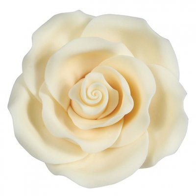 Soft Sugar Rose Ivory 63mm Box of 8