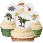 Wafer Dinosaur Discs 12 Pc