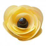 Yellow Wafer Ranunculus Flower Kit Makes 3