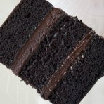 Chocolate Sample Sponge Cake (No Filling)