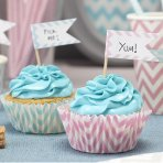 Ginger Ray Cupcake Picks - Chevron Pattern Blank Flags